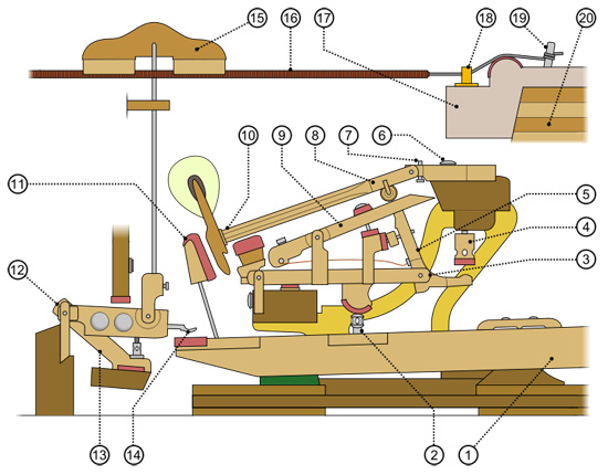 Diagram of a grand piano action